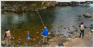 荘川町の釣り場情報