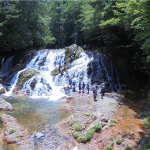 魚帰りの滝でのシャワークライミング